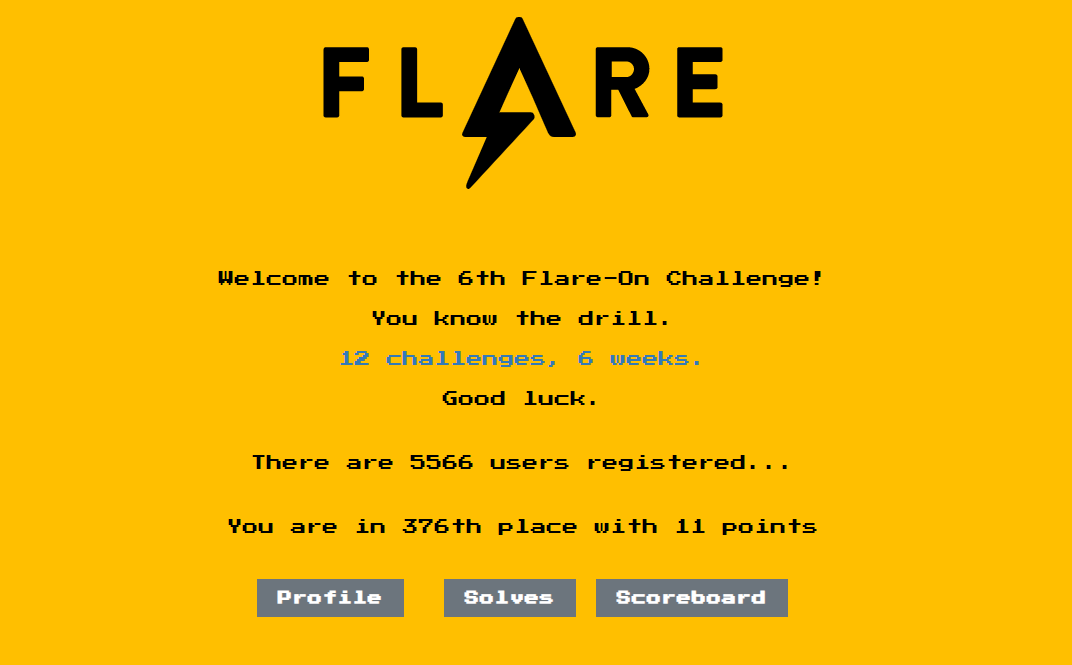 Write-up: Flare-On 6